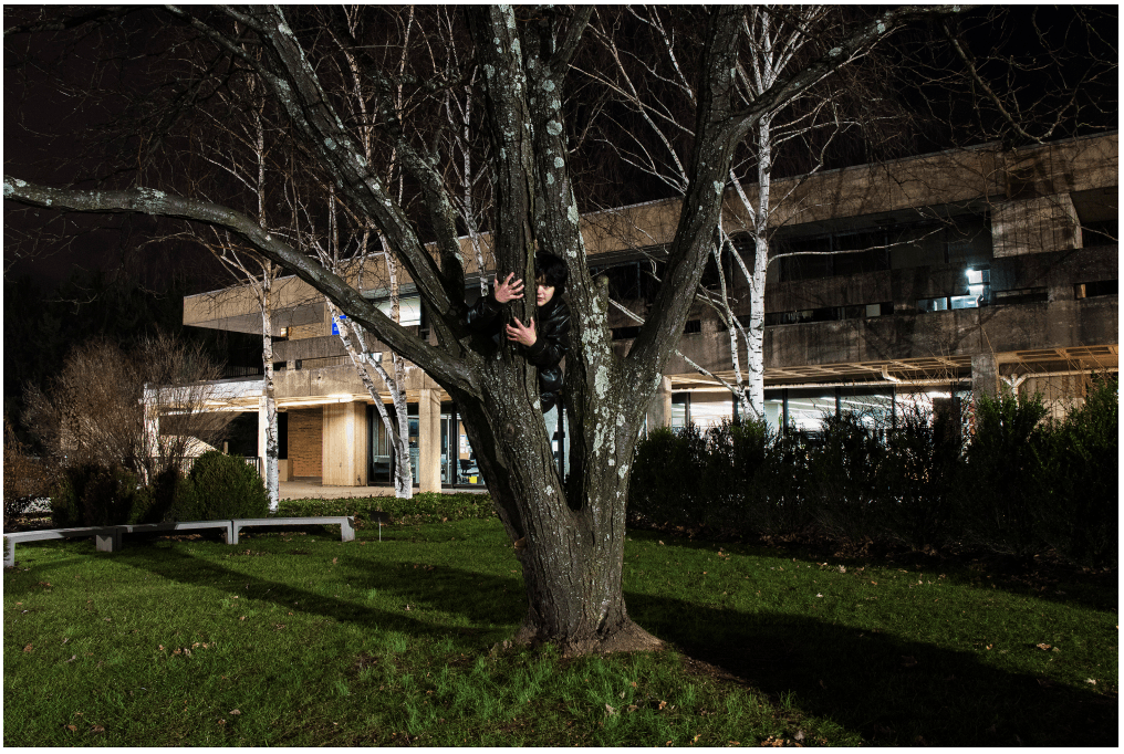 Scattered Nightmares: Treelogy - Bryan Segovia, Student, Rockland Community College